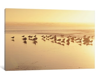 iCanvas Kalaloch Sunset II Gallery Wrapped Canvas Art Print by Laura Marshall