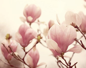 Nature Photography- Magnolia Flowers Photo, Tulip Magnolias, Pink Magnolia Photo, Flower Photography, Spring Flowers Print, Floral Art Print
