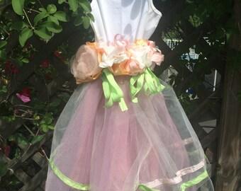 Blush Pink Dusty Rose Tutu Dress ready to ship size 4t