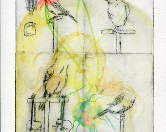 The birds of everyday #1, gravure