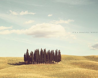 Cypress Trees Art, Cypress Trees Print, San Quirico d'Orcia, Tuscany Photography, Tuscany Print, Countryside Art, Landscape Photography