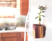 Fused Hardwood Magnet Planter