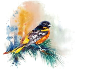 "8x10"" Baltimore Oriole Bird Watercolor Giclee Fine Art Print [Watercolor Bird Portrait Print, Oriole Print, Oriole Bird Art, Watercolor Art]"