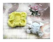 push mold - silicon mold, flexible Silicone mold,  food supplies mold, clay supplies molds, pirate mold  , #  42 s