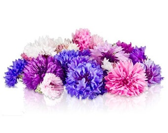 75 + Organic Real Candied BACHELOR BUTTONS, Purple Blue, Pink, White, Edible Flowers, Bulk, Wedding Cakes, Large Orders Only