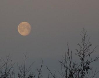 Snow Moon, February Moon photo, setting moon, moonset, winter dawn sky, lunar photography, la lune, Luna