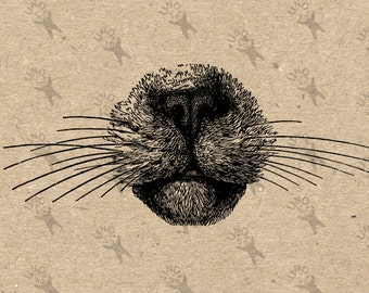 Vintage Sassy cat nose image Domestic Cat Kitty drawing Instant Download Digital printable clipart graphic transfer burlap fabric HQ300dpi