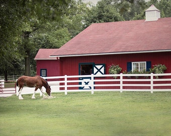 Horse Picture, Stable Photograph, Barn Photography, Patriotic Farm Art Print, Red white and blue Art, Americana Artwork, Country Photo