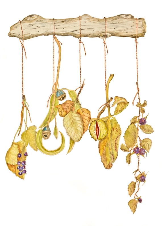 LIMITED EDITION: Fall Harvest Dangling Display with Berries, Eucalyptus, Birch, Chestnut & Brambles, Autumn Woodland Harvest Fall Art Print