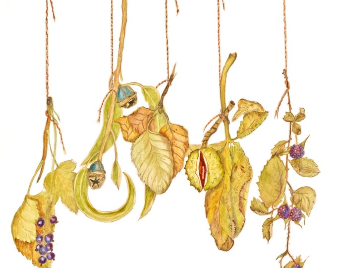 ORIGINAL ARTWORK: Fall Harvest Dangling Display with Berries, Eucalyptus, Birch, Chestnut & Brambles, Autumn Harvest Fall Original Drawing.