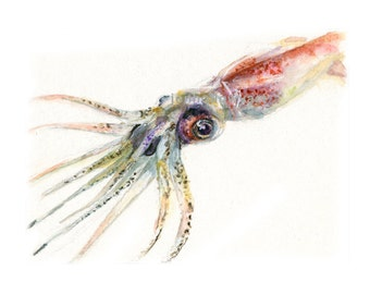Watercolor Squid, Squid Print, Firefly Squid Print, Fish Art, Seafood Art, Fish Print