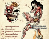Zombie, Anatomy, Rockabilly Pinup,  dark Art by Marcus Jones
