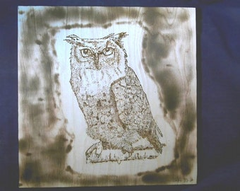 Art Pyrography-Owl- Handcrafted-Wood Burnt Wall Plaque Signed