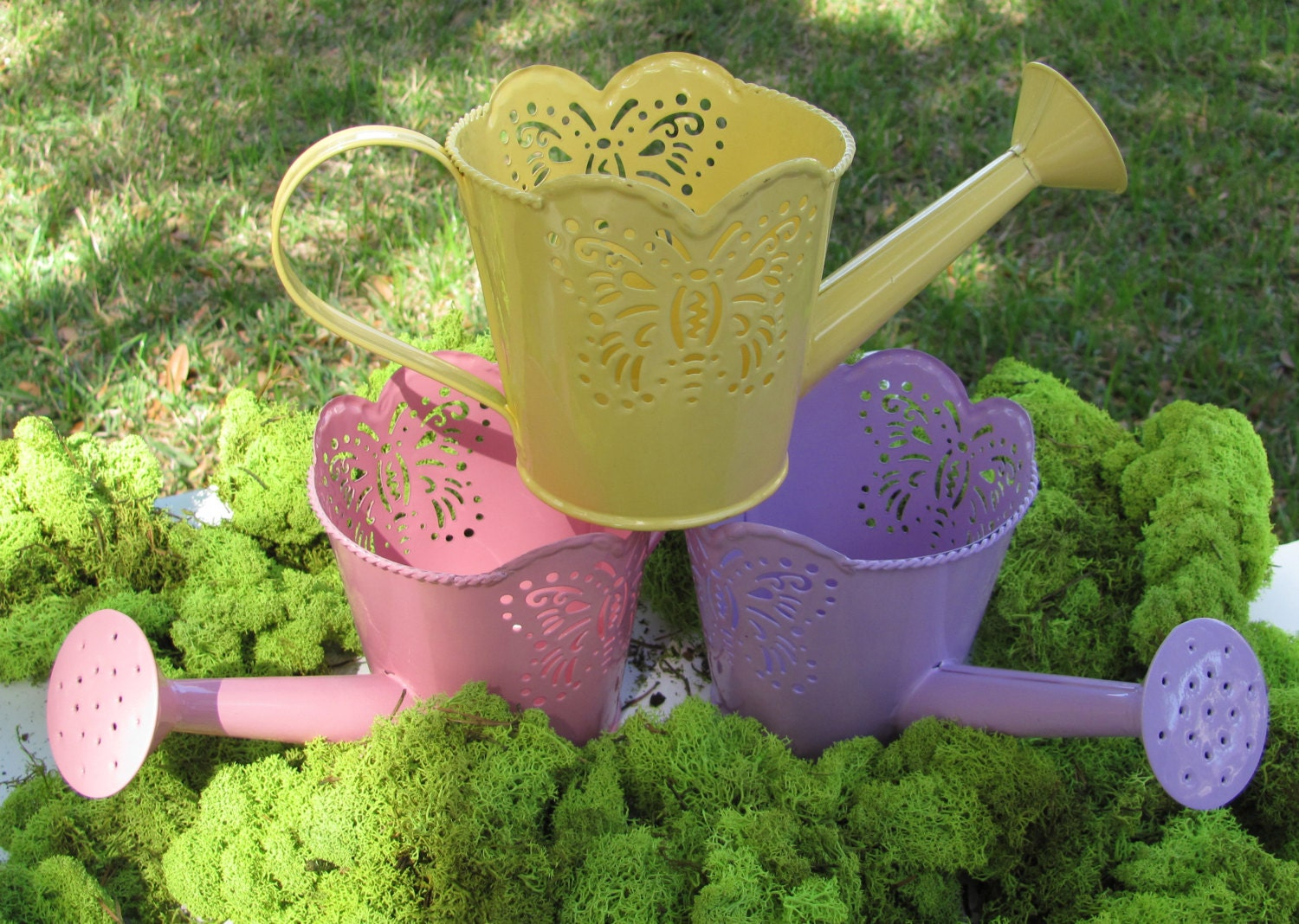 Watering Can Planter Planter Choice Of Yellow Or Pink