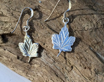 Sterling Silver Maple Leaf Earrings on Sterling Silver Wires