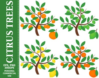 50% OFF SALE Citrus Trees & Fruits Clip Art - Tree, Lemon, Orange, Grapefruit, Lime, Citrus Clip art