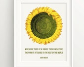 """Muir Print - quote """"When one tugs... rest of the world."""" - sunflower - Wall Art Print **DIGITAL DOWNLOAD VERSION**"""