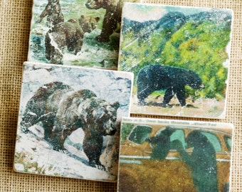 Cabin Decor- Cabin Gift, Bear House Decor, Bear Decor, Bear Coaster, Cabin Coaster, Bear, Vintage Bear, Bear Tile, Mountain House Decor
