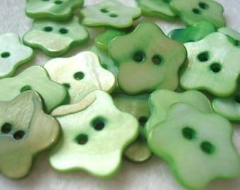 18mm Shell Flower Shape Buttons, Pack of 15 Green Shell Buttons, AS06