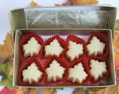 Maple Candy - 8 Little Leaves of Sweetness (Boxed)