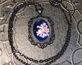 Black Lace and Sapphire Pool Pink Pressed Queen Annes Lace Cameo Style Preserved Specimen Flower Necklace