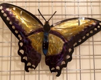 Butterfly D6