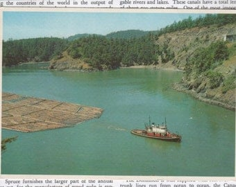 Vintage Postcard Washington Puget Sound Deception Pass Blank Unused FREE SHIPPING USA