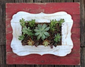 Red Barn Wood Succulent Planter, Vertical Garden, Living Wall