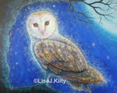 Barn Owl - High Quality L...