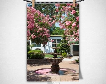 Pink Fountain Botanical Photography Garden Photo Nature and Plants Art Print, gift for her, floral decor