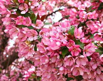 Blooming Tree Digital Print