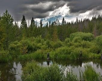 Colorado Mountain Pond Photography