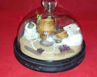 SALE!  Taxidermy Rat(s) Snake Charmer Glass Dome Display-faux cobra-real scorpion//diorama-anthropomorphic
