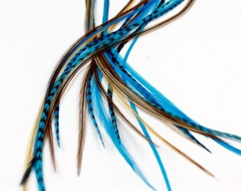 Real Feather Hair Extensions : 7 Long 11-13 inch Blue Naturals + Rings / Loop