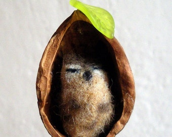 Needle Felted Owl in Walnut Shell Ornament