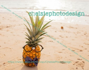 Beach Pineappple Glasses  Print - Fine Art - Hawaii - Beach - Fruit - 5x7 8x10 11x14