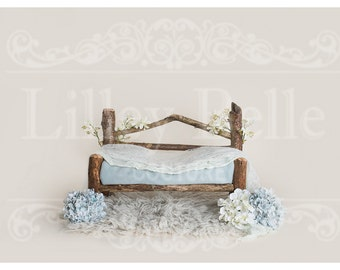 Digital prop/backdrop (Woodland Bench Blue and Cream Floral)