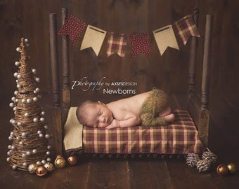 Newborn Baby Photography Prop:  Includes Bed, Bedding, and Banner