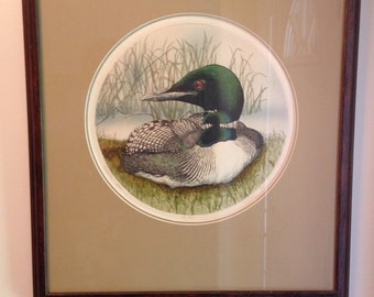 Common loon Sue Ellen Ross fine art print signed and numbered 100/350