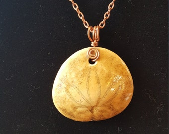 Fossil Sand Dollar Copper Wire Wrapped Pendant