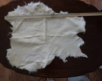 White goat hide
