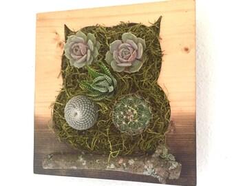 CUSTOM COLOR: Owl Succulent + Cacti Vertical Garden | Vertical Planter | Living Wall | Wall Planter | Hanging Planter | Wood Planter