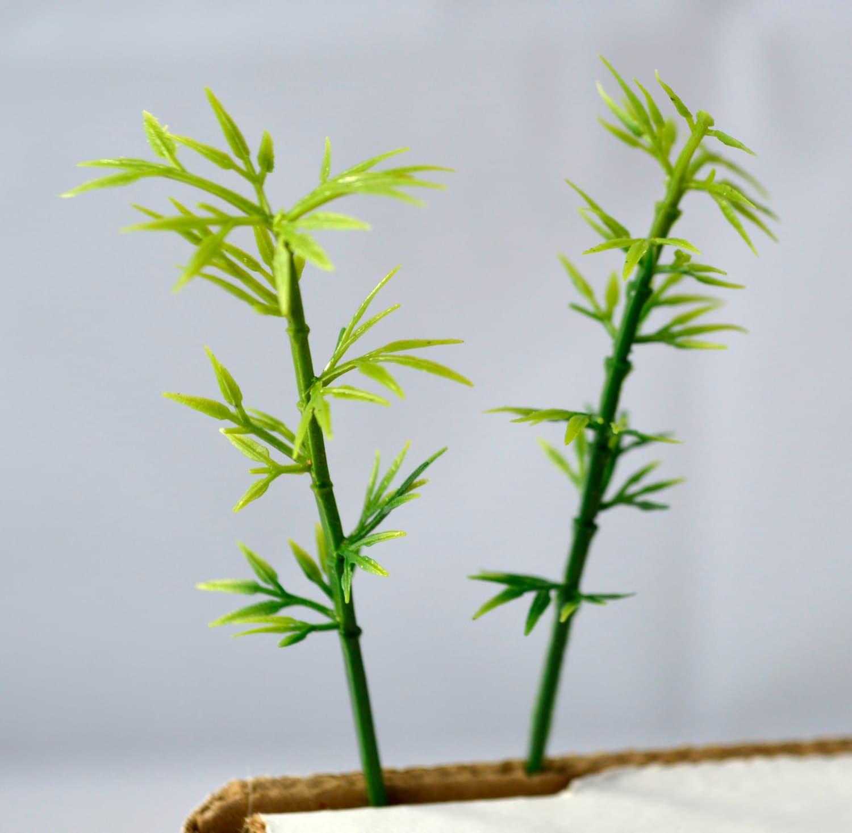 Mini Bamboo Plant : Bamboo miniature tree garden plants terrarium doll house