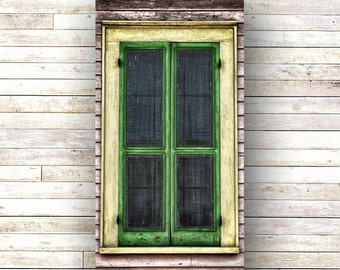GREEN SCREEN - New Orleans art - French Quarter Doors - Architecture - Door Photography - Windows