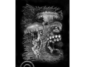 Sea Life #3, Inkjet print  7x9 image on 11x14 archival paper