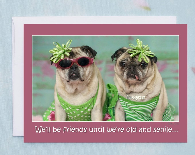 Funny Friendship Card - We'll Be Friends Until We're Old and Senile - Funny Cards for Friends by Pugs and Kisses
