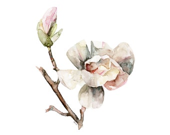 """Magnolia Painting - Print from Original Watercolor Painting, """"Magnolia 1"""", Spring Flower, Botanical, Garden"""
