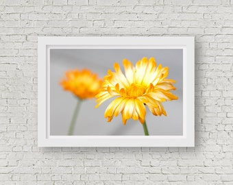 Photograph - Dreamy Yellow Daisy Child Nursery Decor Fine Art Photography Print Wall Art Home Decor