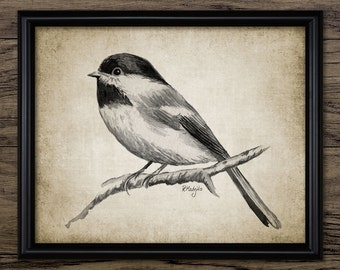 Chickadee Print - Chickadee Watercolor Garden Bird Art - Woodland Bird Digital Art - Printable Art - Single Print #1006 - INSTANT DOWNLOAD