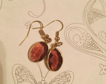 Brown Drop Earrings with Gold Accent